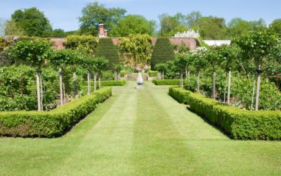 Paysagiste à Blamont : création et entretien de jardin